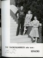 1946015_tb
