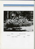 1933009_tb