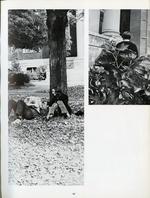 1971044_tb