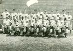 Baseball19570001_tb