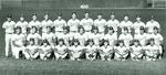Baseball19910001_tb