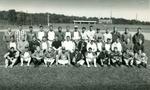 Baseball19950001_tb