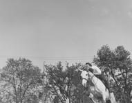 1960_tb