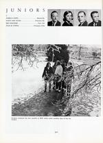1965320_tb