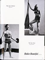 1947069_tb