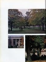 1973018_tb