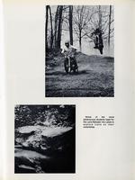1973045_tb