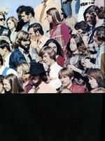 1973096_tb