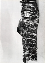 1973341_tb