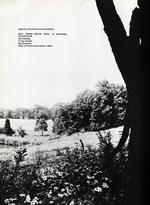 1973386_tb