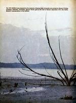 1973388_tb