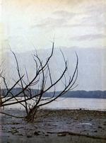 1973389_tb