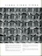 1954065_tb