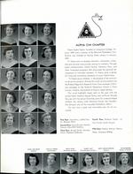 1954066_tb
