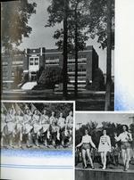 1942004_tb