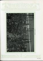 1929009_tb