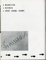 1949066_tb
