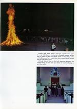 1966018_tb
