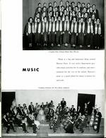 1955077_tb