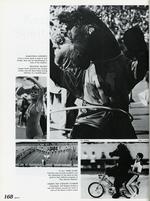 1985169_tb