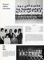 1967229_tb