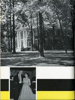 1956010_tb