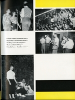 1956011_tb