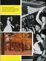 1956012_tb
