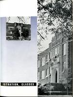 1951005_tb