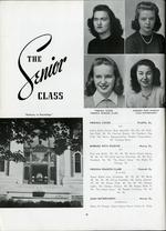 1945017_tb
