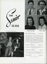 1945021_tb