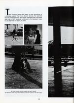 1970041a_tb