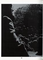 1970408_tb