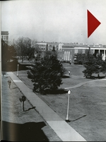 1952005_tb